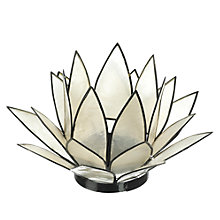 Buy Parlane Lotus Flower Tealight Holder Online at johnlewis.com