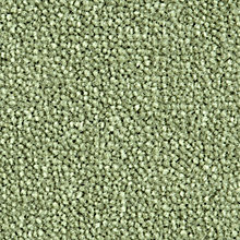 Buy John Lewis Defined Velvet Carpet, Mint Online at johnlewis.com