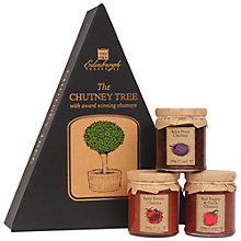 Buy Edinburgh Preserves Chutney Tree Gift, 600g Online at johnlewis.com
