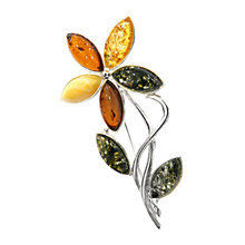 Buy Goldmajor Silver Multicolour Amber Flower Brooch Online at johnlewis.com