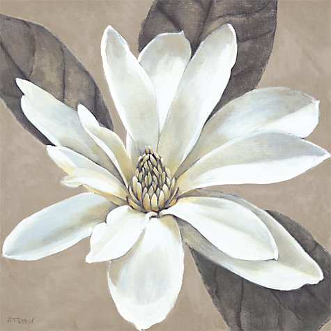 Buy Adelene Fletcher- Ivory Magnolia Print On Canvas, 48 x 48cm Online at johnlewis.com