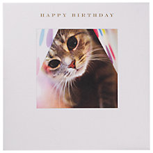 Buy Susan O'Hanlon Tabby & Polka Dot Birthday Card Online at johnlewis.com