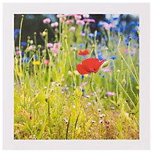 Buy Peter John Fellows Wildflowers Greeting Card Online at johnlewis.com