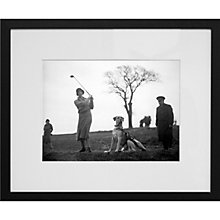 Buy Getty Images Gallery Vera White Canine Caddie Framed Print, 50 x 57cm Online at johnlewis.com
