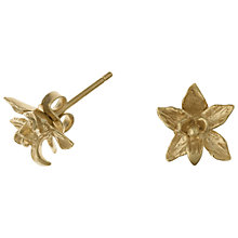 Buy Dower & Hall 18ct Gold Vermeil Nirvana Small Orchid Stud Earrings Online at johnlewis.com