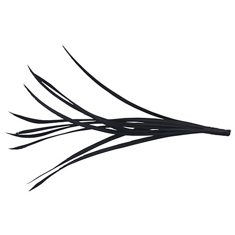 Buy John Lewis Goose Mount Feather Online at johnlewis.com