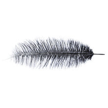 Buy John Lewis Ostrich Feather Online at johnlewis.com