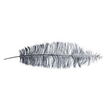 Buy John Lewis Spadone Ostrich Feather Online at johnlewis.com