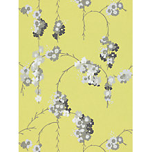 Buy Harlequin Giselle Wallpaper, Charcoal, 110134 Online at johnlewis.com