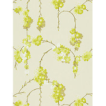 Buy Harlequin Giselle Wallpaper, Pistachio, 110133 Online at johnlewis.com