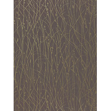 Buy Harlequin Grasses Wallpaper, Chocolate, 110156 Online at johnlewis.com