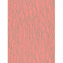 Buy Harlequin Grasses Wallpaper, Coral / Pewter, 110155 Online at johnlewis.com