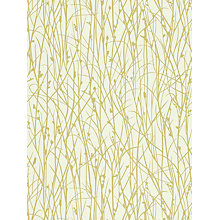 Buy Harlequin Grasses Wallpaper, White, 110153 Online at johnlewis.com
