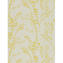 Buy Harlequin Salvia Wallpaper, Citrus, 110158 Online at johnlewis.com