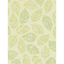 Buy Sanderson Woodland Wallpaper, Emerald / Green, 211088 Online at johnlewis.com
