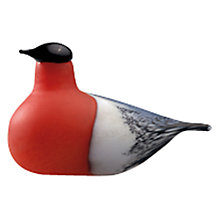 Buy Iittala Toikka Birds Bullfinch Online at johnlewis.com