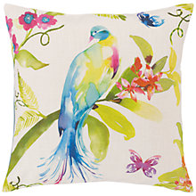 Buy Voyage Tropical Bird Cushion, Multi Online at johnlewis.com