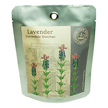 Buy Kew Gardens Pocket Garden, Lavender Online at johnlewis.com