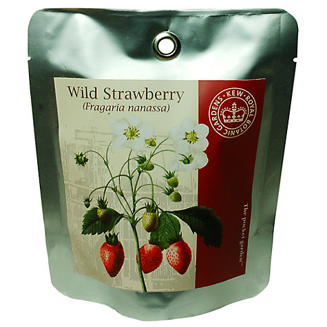 Buy Kew Gardens Pocket Garden, Strawberry Online at johnlewis.com