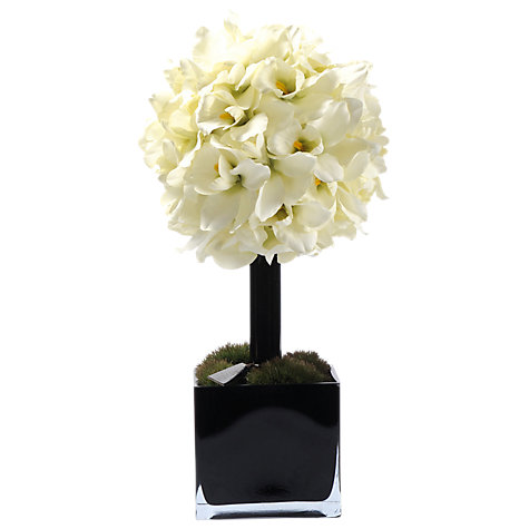 Buy Hervé Gambs Topiary Couture Orchid, White, Small Online at johnlewis.com