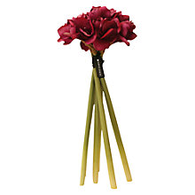 Buy Hervé Gambs Amaryllis Bouquet, Fuchsia Online at johnlewis.com