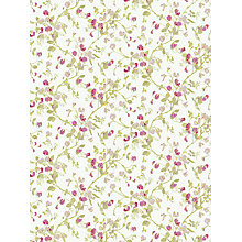 Buy Cole & Son Sweet Pea Wallpaper Online at johnlewis.com