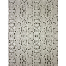 Buy Osborne & Little Boa Wallpaper Online at johnlewis.com