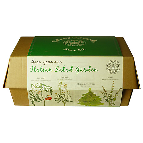 Buy Kew Gardens Provencal Italian Salad Garden Grow Box Online at johnlewis.com