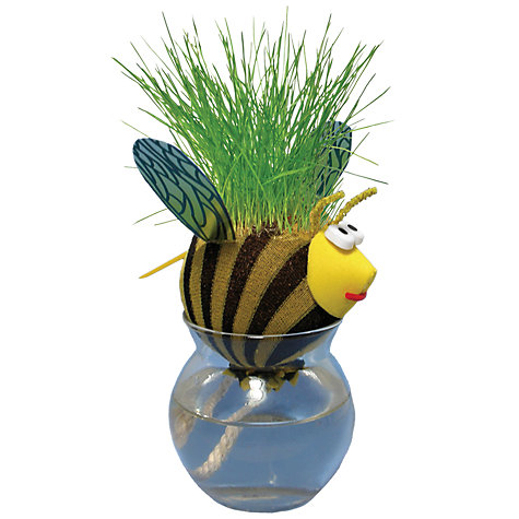 Buy Grow A Head Bug, Assorted Online at johnlewis.com