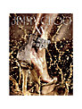 Jimmy Choo: Icons