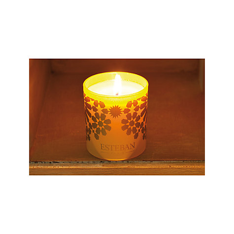 Buy Esteban Ambre Scented Candle In a Box, 150g Online at johnlewis.com