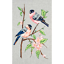 Buy Anchor Bullfinches Embroidery Kit Online at johnlewis.com