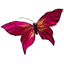 Buy John Lewis Butterflies, Magenta, Pack of 2 Online at johnlewis.com