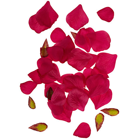 Buy John Lewis Tub of Petals Online at johnlewis.com