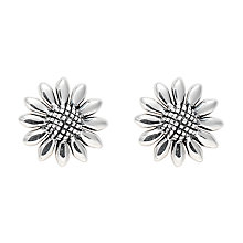 Buy Nina B Daisy Flower Stud Earrings, Silver Online at johnlewis.com