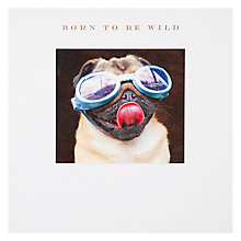 Buy Susan O' Hanlon Born to be Wild Birthday Card Online at johnlewis.com
