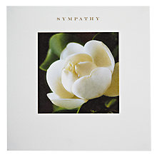 Buy Susan O' Hanlon Magnolia Sympathy Card Online at johnlewis.com
