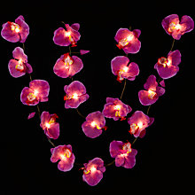 Buy John Lewis Orchid Line Light, Plum Online at johnlewis.com