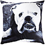Buy Barbara Chandler Love London Bulldog Cushion, Large Online at johnlewis.com