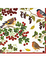 Caspari Birds Napkins, Pack of 20