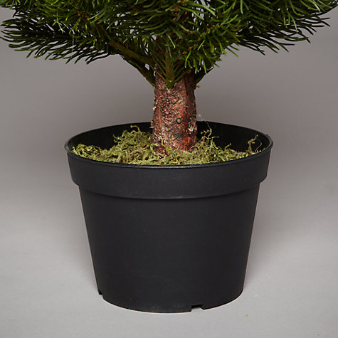 Buy John Lewis Mini Christmas Tree in Pot, Green, 2ft Online at johnlewis.com