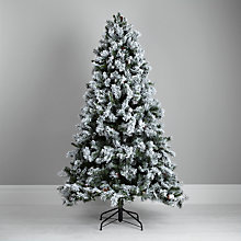 Buy John Lewis Snow Capped Christmas Pine Tree with Pine Cones, Green/White, 7ft Online at johnlewis.com
