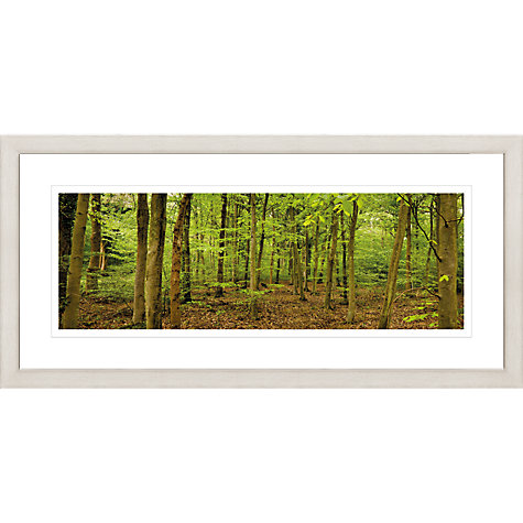 Buy David Purdie - Bixley Woods Framed Print, 52 x 107cm Online at johnlewis.com