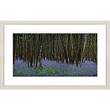 Buy David Purdie - Blue Bells Framed Print, 67 x 107cm Online at johnlewis.com