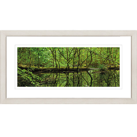 Buy David Purdie - Pond Green Framed Print, 87 x 47cm Online at johnlewis.com