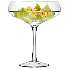 Buy LSA International Midi Champagne Saucer, H34cm Online at johnlewis.com