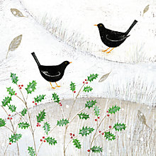 Buy Almanac Blackbirds In The Snow Charity Christmas Cards, pack of 10 Online at johnlewis.com