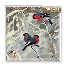 Buy Almanac Bullfinches Christmas Cards, pack of 10 Online at johnlewis.com