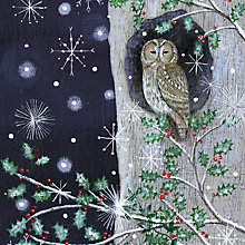Buy Almanac Holly And Tawny Owl Charity Christmas Cards, Box of 10 Online at johnlewis.com