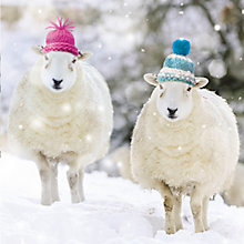 Buy Almanac Wooly Hats Charity Christmas Cards, pack of 8 Online at johnlewis.com